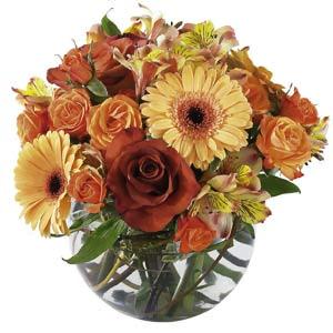 Gửi Hoa tươi đến Hàn Quốc Hoa tươi Korea-08 Bouquet of Mixed Cut Flowers Lưu ý: Hoa tươi dành riêng cho thị trườngHàn Quốc Xem thêm danh mục hoa dành riêng cho thị trường Hàn Quốc: Hàn Quốc
