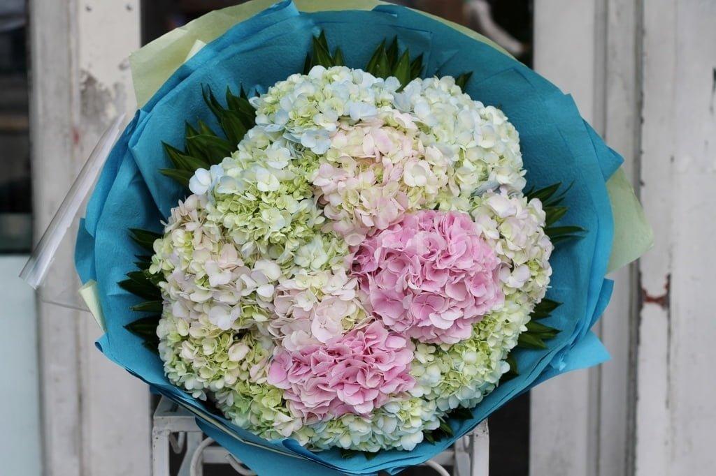 Gợi ý chọn các loại hoa Ý nghĩa tặng thầy cô dịp 20 – 11