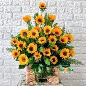 Giỏ hoa hướng dương-Ánh nắng mặt trời-TGHT-20010